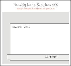 fms-255-sketch
