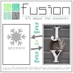 fusion-joy-challenge