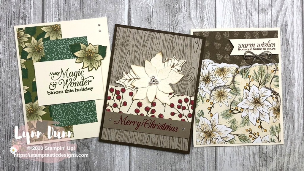 Christmas Card Ideas 2020 Poinsettia Petals   6 Christmas Card Ideas | Lynn Dunn