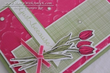 Backyard Basics 2 - Stamp With Amy K