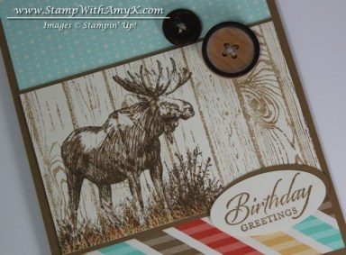 Walk in the Wild 2 - Stamp With Amy K