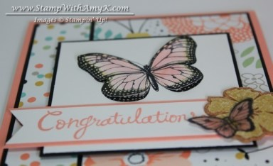 Best of Butterflies 1 - Stamp With Amy K