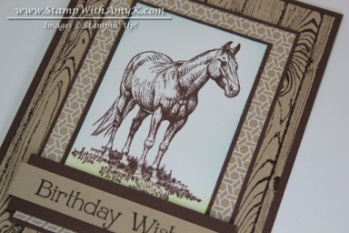 Horse Frontier 3 - Stamp With Amy K