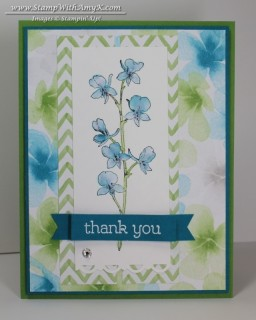 Happy Watercolor - Stamp With Amy K