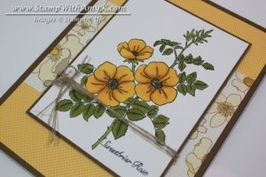 Sweetbriar Rose 3 - Stamp With Amy K