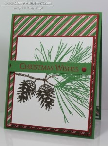 Ornamental Pine 8 - Stamp With Amy K