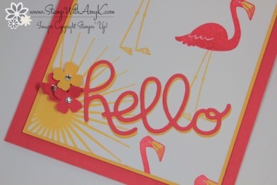 Flamingo Lingo 3 - Stamp With Amy K