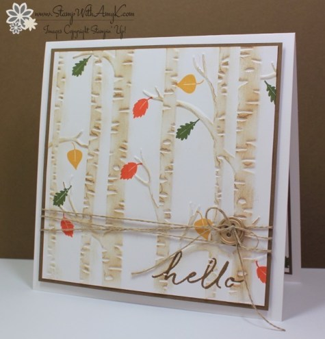 Watercolor Wishes - Stamp With Amy K