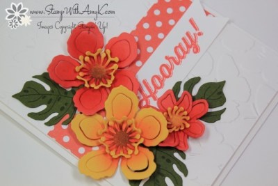 Perfect Pairings 3 - Stamp With Amy K