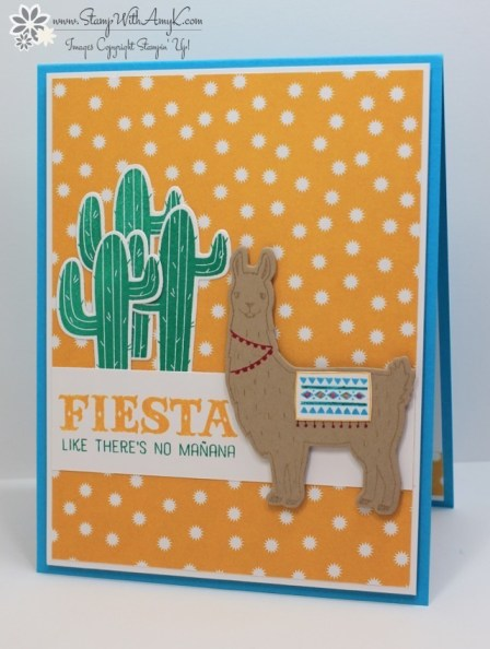 Birthday Fiesta - Stamp With Amy K