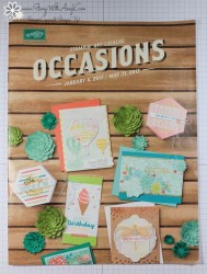 stampin-up-2017-occasion-catalog-stamp-with-amy-k