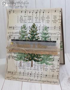 Season Like Christmas - Stamp With Amy K