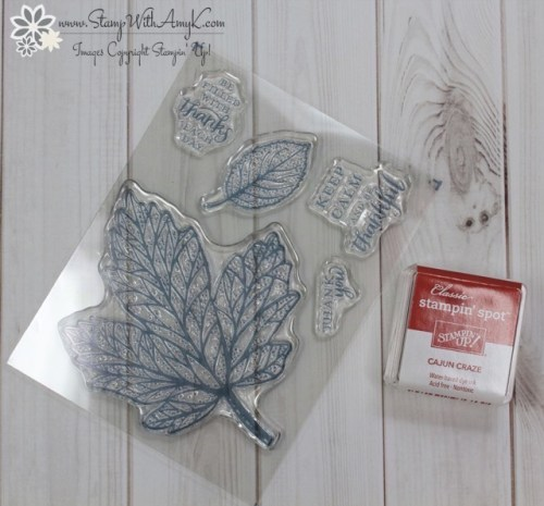Stampin' Up! September Paper Pumpkin - Stamp With Amy K