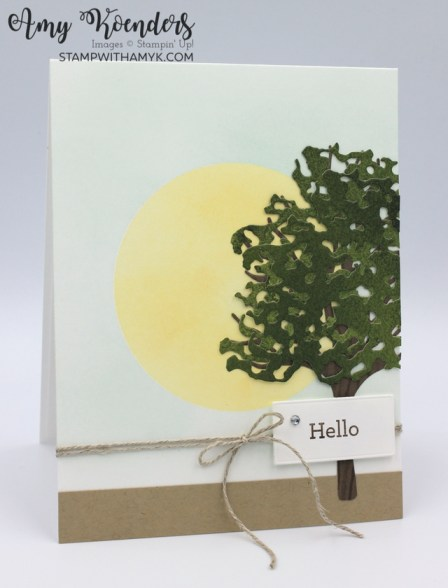 Stampin' Up! Beauty Of Friendship Hello Card