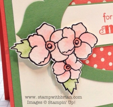 Bordering on Romance, Stampin' Up!, Brian King
