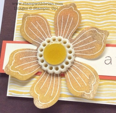 Bloom for You, Lots of Thanks, Stampin' Up!, Brian King, PP207