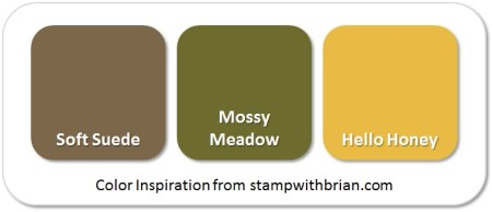 Stampin' Up! Color Inspiration: Soft Suede, Mossy Meadow, Hello Honey