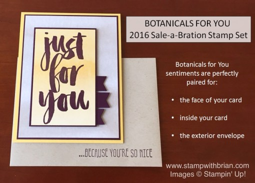 Botanicals for You, Perfectly Artistic Designer Series Paper, Stampin' Up!, Brian King
