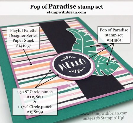 Pop of Paradise, Stampin' Up!, Brian King, GDP038