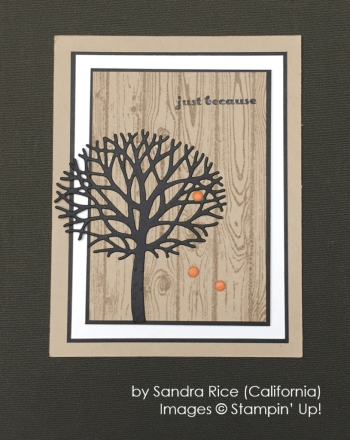 by Sandra Rice, Stampin' Up!, Holiday One-for-One Swap