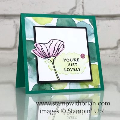 Oh So Eclectic, Eclectic Expressions, Stampin' Up!, Brian King