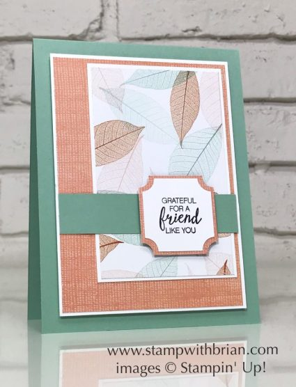Bunch of Blossoms, Nature's Poem Designer Series Paper, Stampin' Up!, Brian King, CTS283