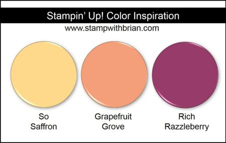 Stampin' Up! Color Inspiration: So Saffron, Grapefruit Grove, Rich Razzleberry
