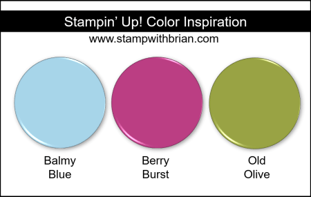 Stampin' Up! Color Inspiration - Balmy Blue, Berry Burst, Old Olive