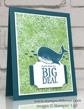 Whale Done Bundle, Stampin Up!, Brian King