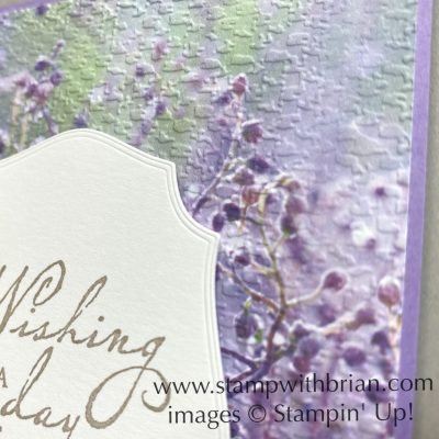 Woven Heirlooms, Feels Like Frost, Stampin Up!, Brian King
