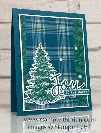 Winter Woods, Peace and Joy, Stampin Up!, Brian King