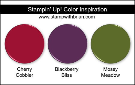 Stampin Up! Color Inspiration - Cherry Cobbler, Blackberry Bliss, Mossy Meadow