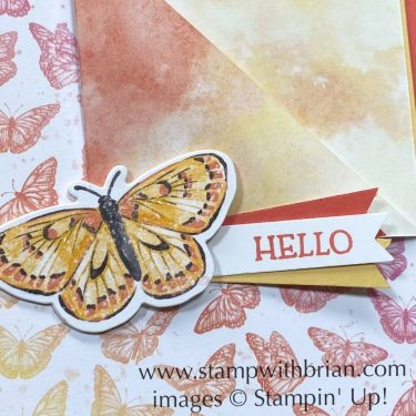 Butterfly Bijou, Butterfly Brilliance, Stampin Up!, Brian King
