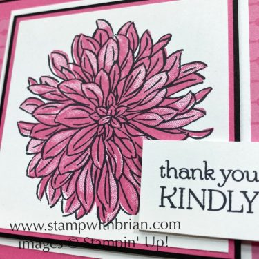 Delicate Dahlias, Stampin Up!, Brian King
