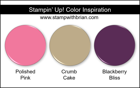 Stampin Up! Color Inspiration - Polished Pink, Crumb Cake, Blackberry Bliss