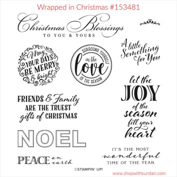 Wrapped in Christmas Stamp Set Image
