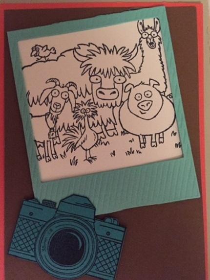 Scrapbook From the Herd