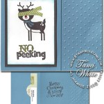VIDEO TUTORIAL: No Peeking Gift Card Holder