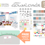 MDS: My Digital Studio-Your Final Destination for All Things Digital!