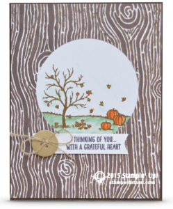 stampin up all scenes stamp set