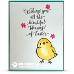 VIDEO: Watercoloring the Easter Chickie