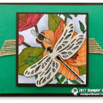 CARD: Dragonfly Dreams meet Inside the Lines DSP