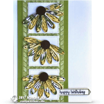 CARD: Happy Birthday Gorgeous Daisy Trio Card and the Bundle is back!
