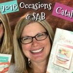 """VIDEO: Huge Holiday Haul from the new Catalog – The Whole """"Sha-Bang""""- Part 2"""
