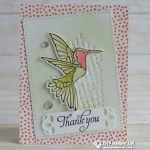 CARD: Thank You Humming Bird Card from the Humming Along Bundle
