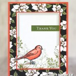 CARD: Thank you card from the Free as a Bird stamps
