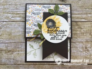 stampin up autumn harvest stamp set cards9