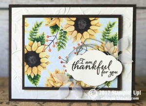stampin up scoop painted autumn suite7