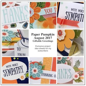 Sneak Peek at the August 2017 Giftable Greetings Paper Pumpkin Kit exclusive alternate projects ...#stampyourartout #stampinup - Stampin' Up!® - Stamp Your Art Out! www.stampyourartout.com