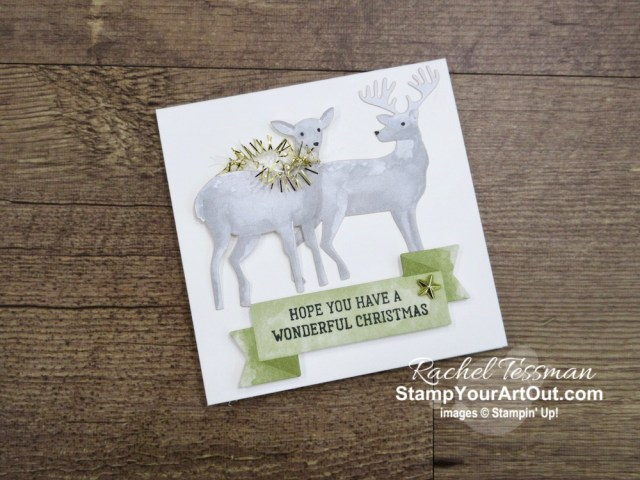 The 2019 Holiday Catalog debuted! Click here to see 4 cards I created with the Most Wonderful Time Product Medley. We were given this medley on the Greek Isles Incentive Trip this summer, and I did my make-n-take cards a bit differently than what was intended.